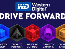 Western Digital Differenza Colori WD Blue Black Red Purple Gold