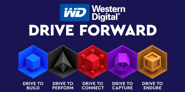 Western Digital Differenza Colori WD Blue Black Red Purple Gold